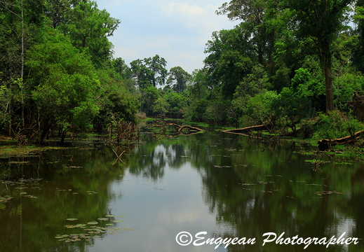 Pond at Prasat Preah Khan (5345)